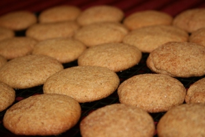 I love making and eating Snickerdoodles and I was glad we didn't need to give them up this Christmas!