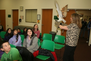 We got to see real, live raptors VERY close up on Wednesday afternoon at the library. Very. Close.Up.