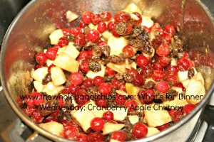 I love how the fresh fruit looks in the pan all together. The colors are so wintry and fresh!