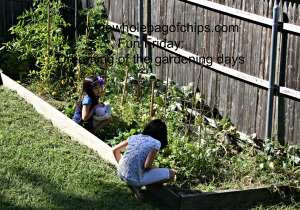 I love seeing their kids out in the garden, exploring the things we're growing.