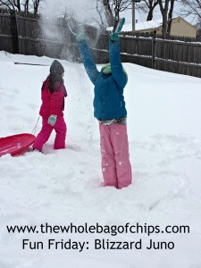Hooray for snow days!