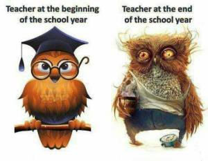 Even though this is designed for teachers, the owl on the right is a pretty accurate representation of how I feel by the end of the school year too.